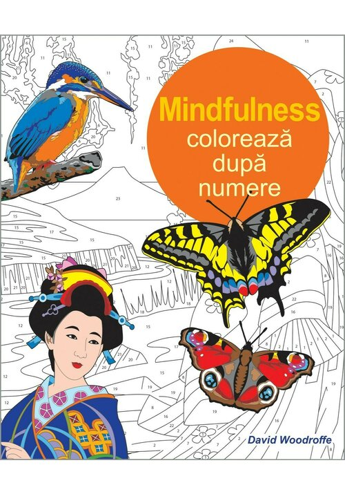 Coloreaza dupa numere - Mindfulness imagine librex.ro 2021