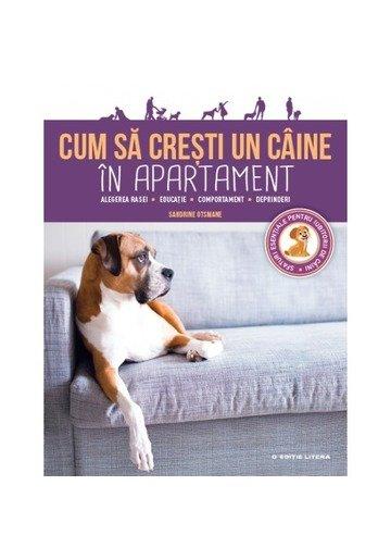 Cum să crești un câine în apartament