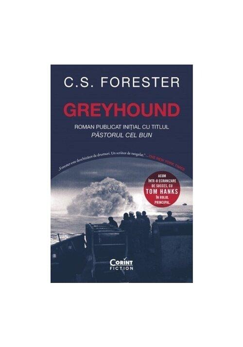 Greyhound imagine librex.ro 2021