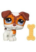 Littlest PetShop Catel Maro