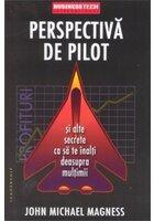 Perspectiva de pilot
