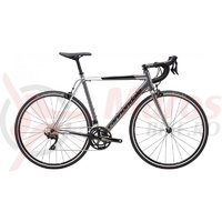 Bicicleta Cannondale CAAD Optimo 105 GRY 2019