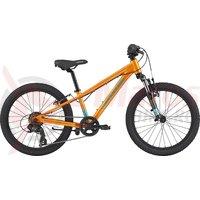 Bicicleta Cannondale Kids Trail 20