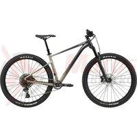 Bicicleta Cannondale Trail SE 1 Meteor Gray 2021