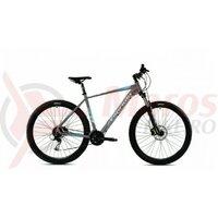 Bicicleta Capriolo Level 9.3 29 grey blue