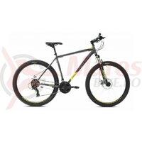 Bicicleta Capriolo Oxygen 29 silver-green