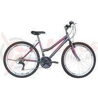 Bicicleta de dama Neuzer Nelson TY37 21v -  26'  Antracit/Gri-Magenta