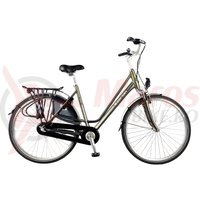 Bicicleta Devron 2830 Darwin 28