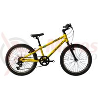 Bicicleta Devron Kid Riddle K1.2 20