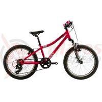 Bicicleta Devron Kid Riddle K2.2 20