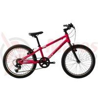 Bicicleta Devron Riddle K1.2 20' roz 2019