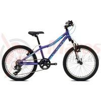 Bicicleta Devron Riddle LH0.2 20