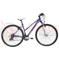 Bicicleta DHS Terrana 2922 violet/argintiu 2017