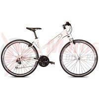 Bicicleta Drag Grand Canyon TE Lady 28