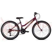Bicicleta copii Hoop Hacker 24