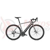 Bicicleta electrica Focus Paralane2 6.9 22G silver 2020