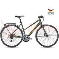 Bicicleta Focus Arriba 3.9 16G TR olive 2019