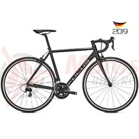 Bicicleta Focus Izalco Race 6.9 22G freestyle 2019
