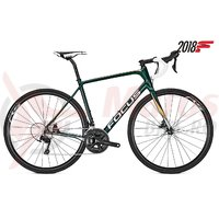 Bicicleta Focus Paralane 105 22G racing green 2018