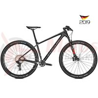 Bicicleta Focus Raven 8.8 12G 29