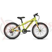 Bicicleta Focus Raven Rookie 7G 20 green 2019