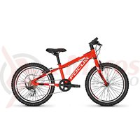 Bicicleta Focus Raven Rookie 7G 20 red 2018