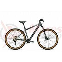 Bicicleta Focus Whistler 3.7 29 Toronto Grey 2021