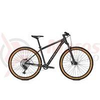 Bicicleta Focus Whistler 3.9 29 diamond black 2020
