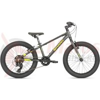 Bicicleta Haro Flightline 20 Plus negru/verde neon 2019