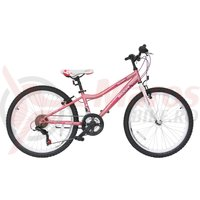 Bicicleta Moon Adria 24
