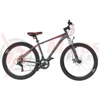 Bicicleta Moon Sprinter 29