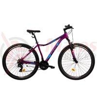 Bicicleta Mtb Terrana 2922 - 29 Inch Violet
