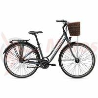 Bicicleta oras Liv Giant Flourish 1 charcoal 2020