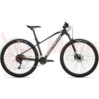 Bicicleta Rock Machine Manhattan 90-29 29