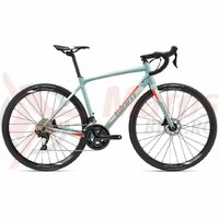 Bicicleta Sosea GIANT Contend SL 1 Disc 28'' Gray Green