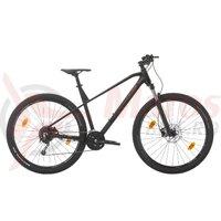 Bicicleta Sprint Apolon Pro 29 negru/gri mat 2020