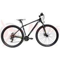 Bicicleta Terrana 2925 29