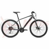 Bicicleta Trekking Giant Roam 2 28
