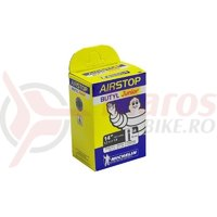 Camera Michelin Airstop G4 20