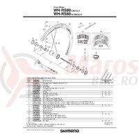 Con Shimano W5H-RS80-C50-CL-F