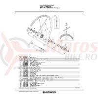 Con Shimano WH-7801-SL-R contrapiulita stanga