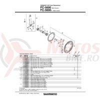 Cuveta Shimano FC-5600 stanga (M36 x 24T) filet italian