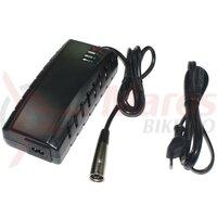 Incarcator baterie Focus Set Charger Imp. Neutral