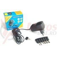 Incarcator baterii 3-12V 600MA