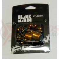 Kit pentru pedale Funn Black Magic (32 cuie schimbabile aurii, cheie 4mm)