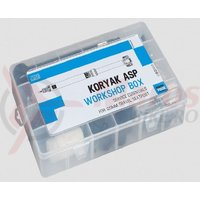 Kit Pro pt. Koryak ASP workshop service essential