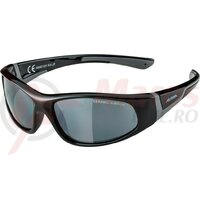 Ochelari Alpina Flexxy Junior Frame black/grey glass Ceram.black refl.S3