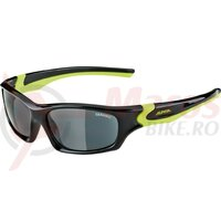 Ochelari Alpina Flexxy Teen frame black/neon yellow glass