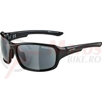 Ochelari Alpina Lyron frame Black/Grey glass black mirror S3
