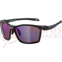Ochelari Alpina Twist Five HM+ frame Black matt ,lenses Blue mirror